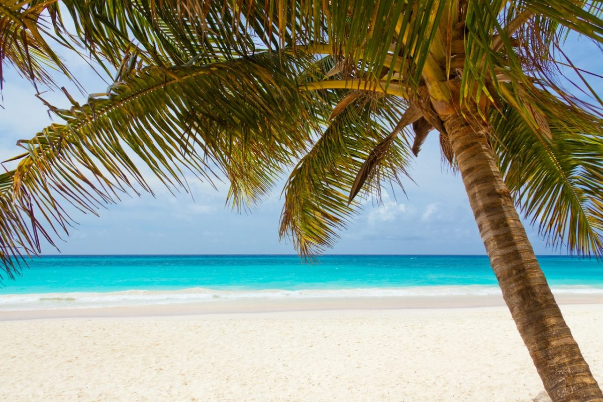 Best Beaches To Visit